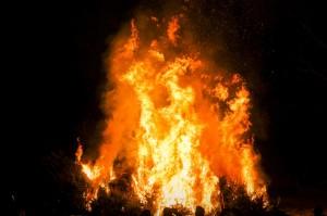 verbrennenWeihnachtsbäume (255)