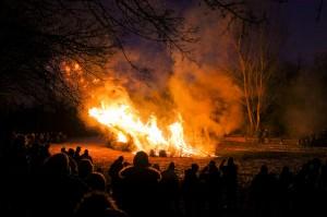 verbrennenWeihnachtsbäume (294)