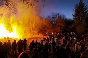 verbrennenWeihnachtsbäume (301)