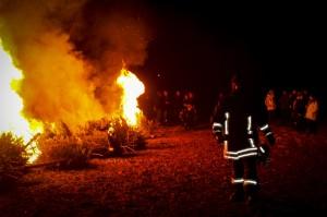 verbrennenWeihnachtsbäume (354)