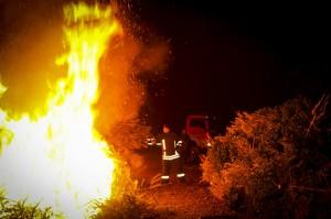 verbrennenWeihnachtsbäume (355)