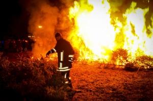 verbrennenWeihnachtsbäume (356)